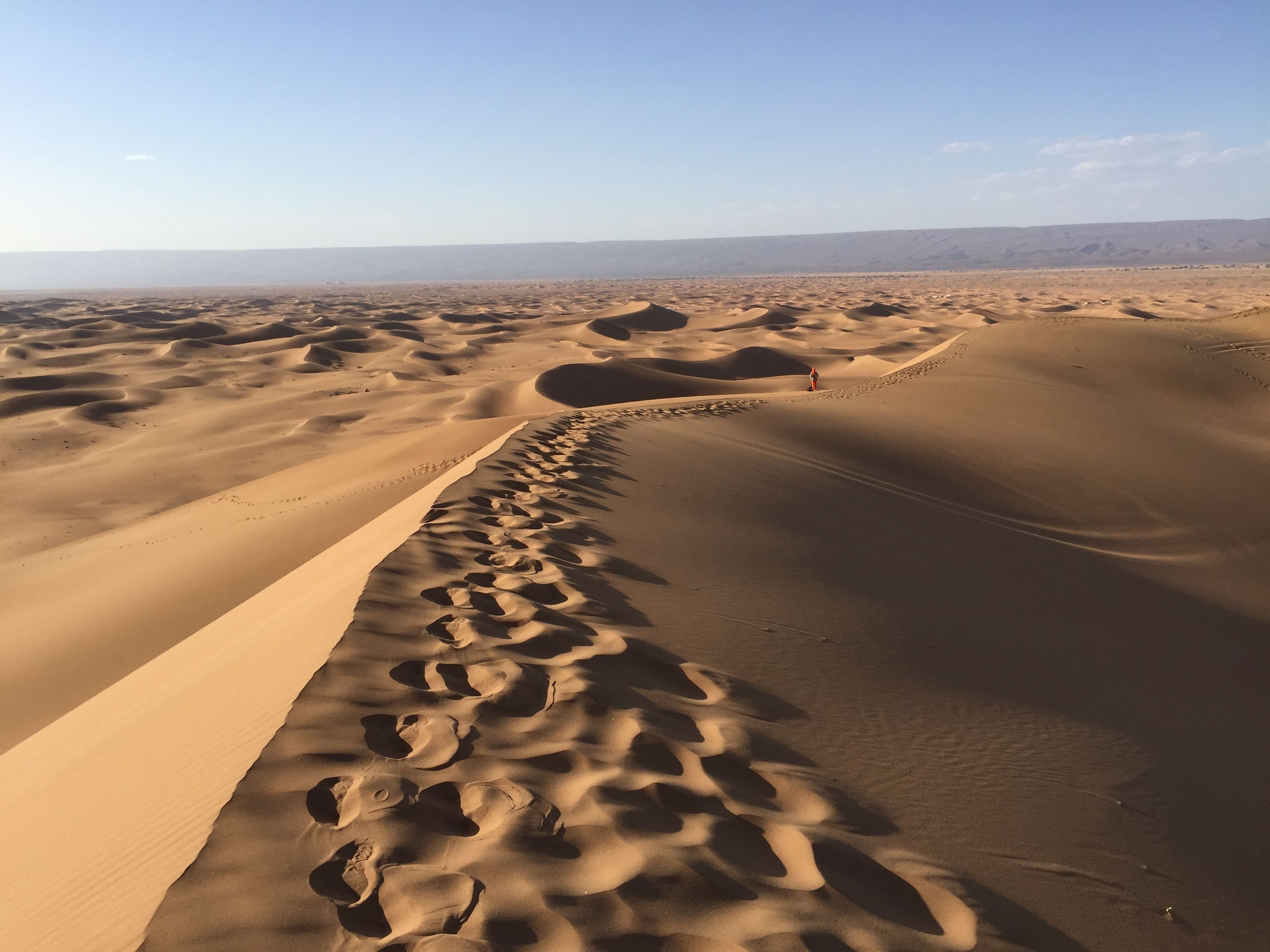 Durch Palmenoasen und Sanddünen