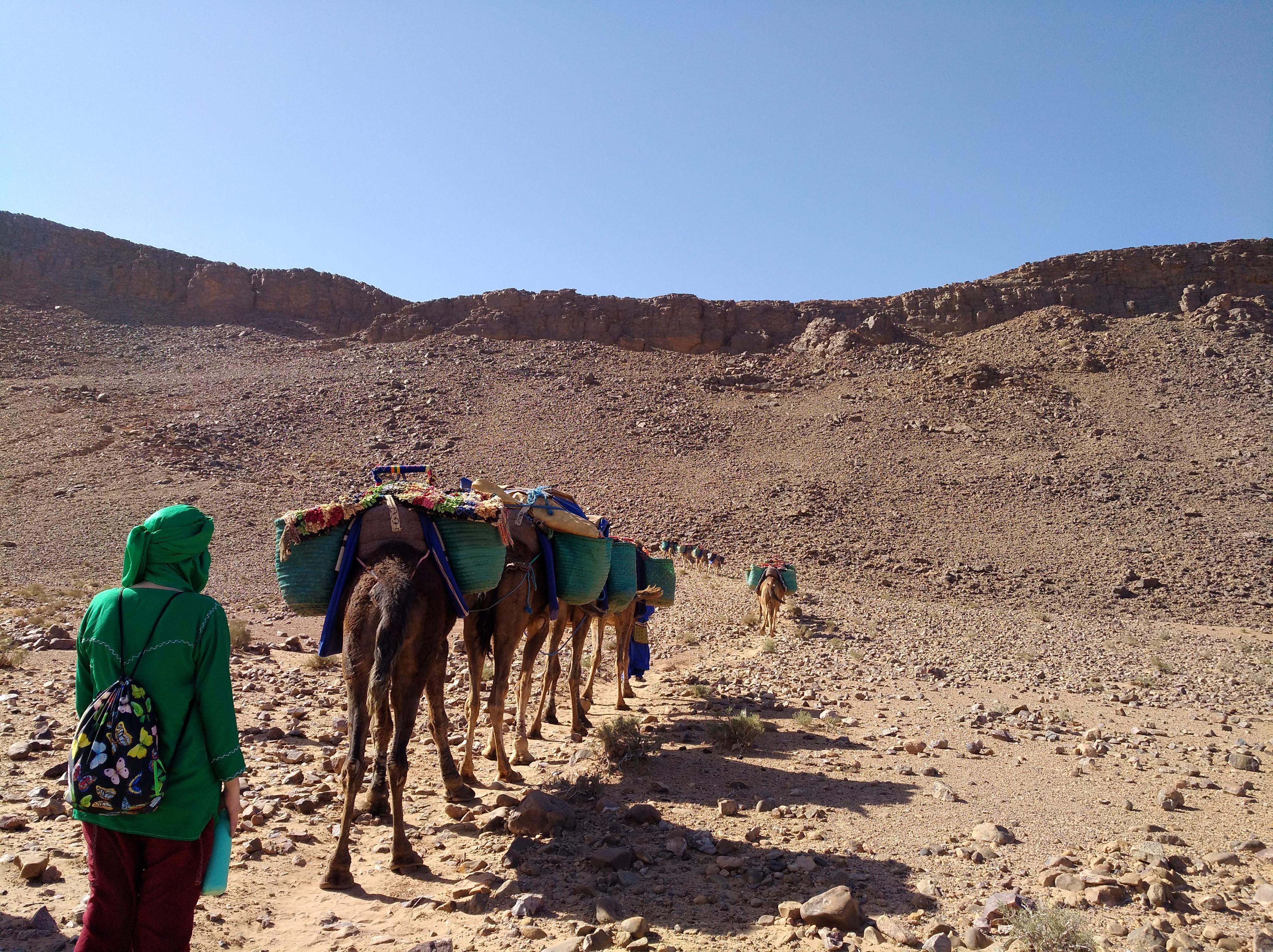 Welt der Berber